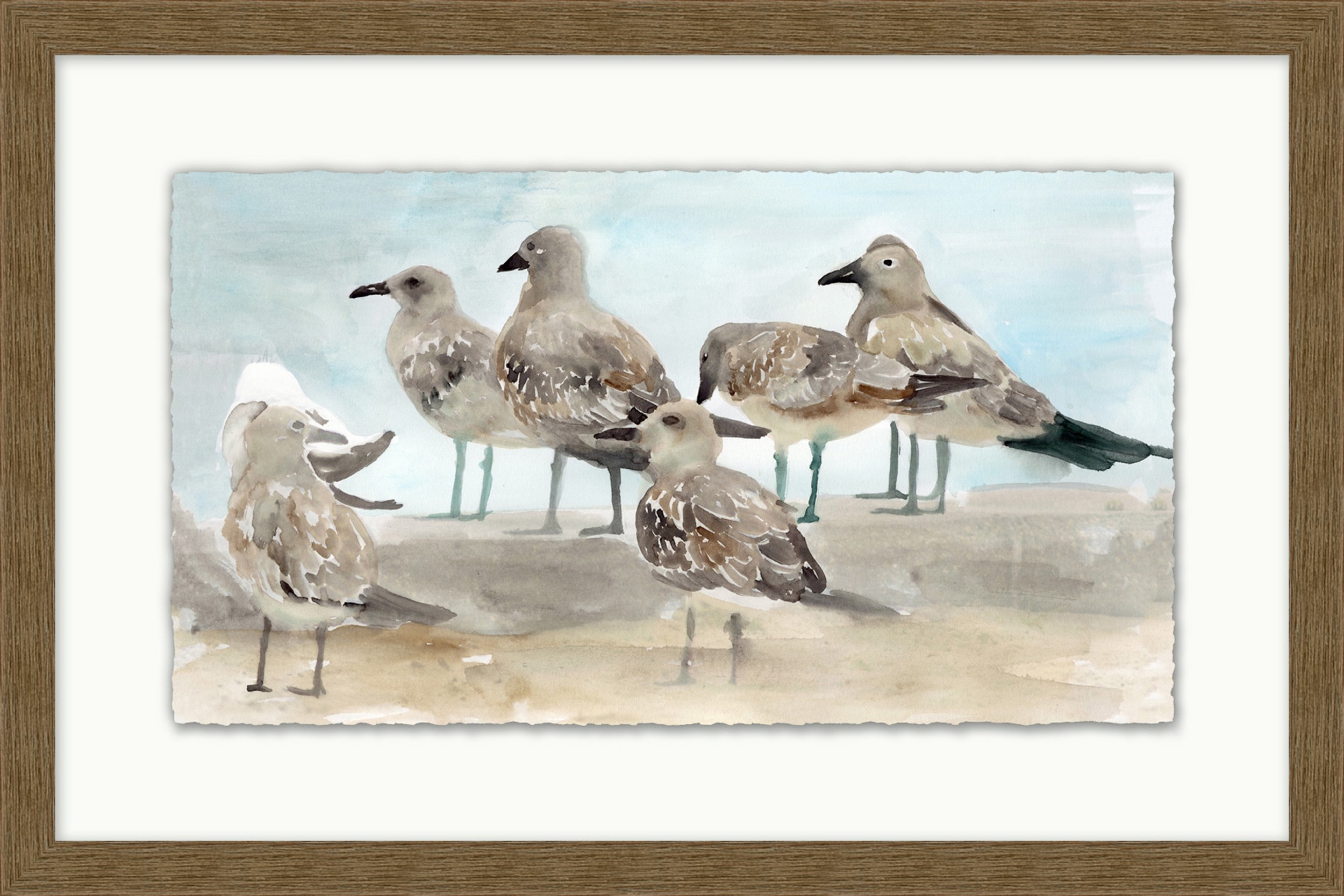 """Group of Gulls"""