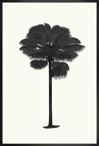 """Palmetto Palm Silhouette"""