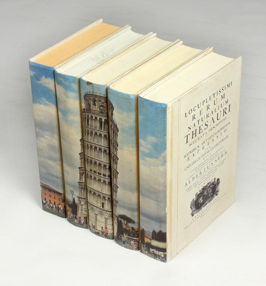 Tower of Pisa Books