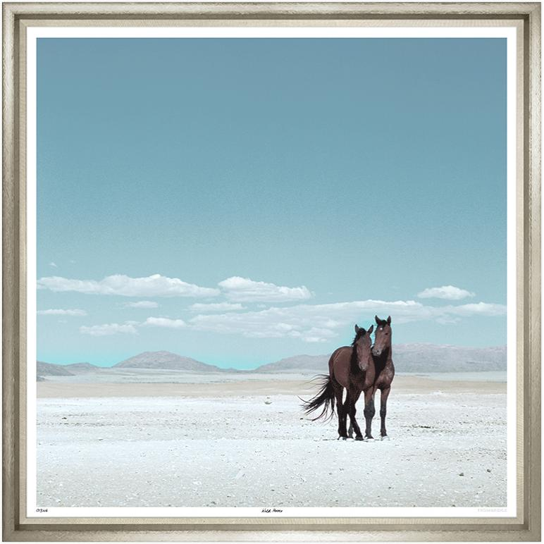 """""""Wild Horses""""-$2,475.00"""