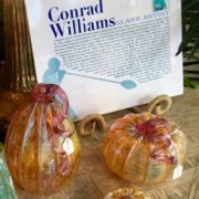 Conrad's pumpkins (1)