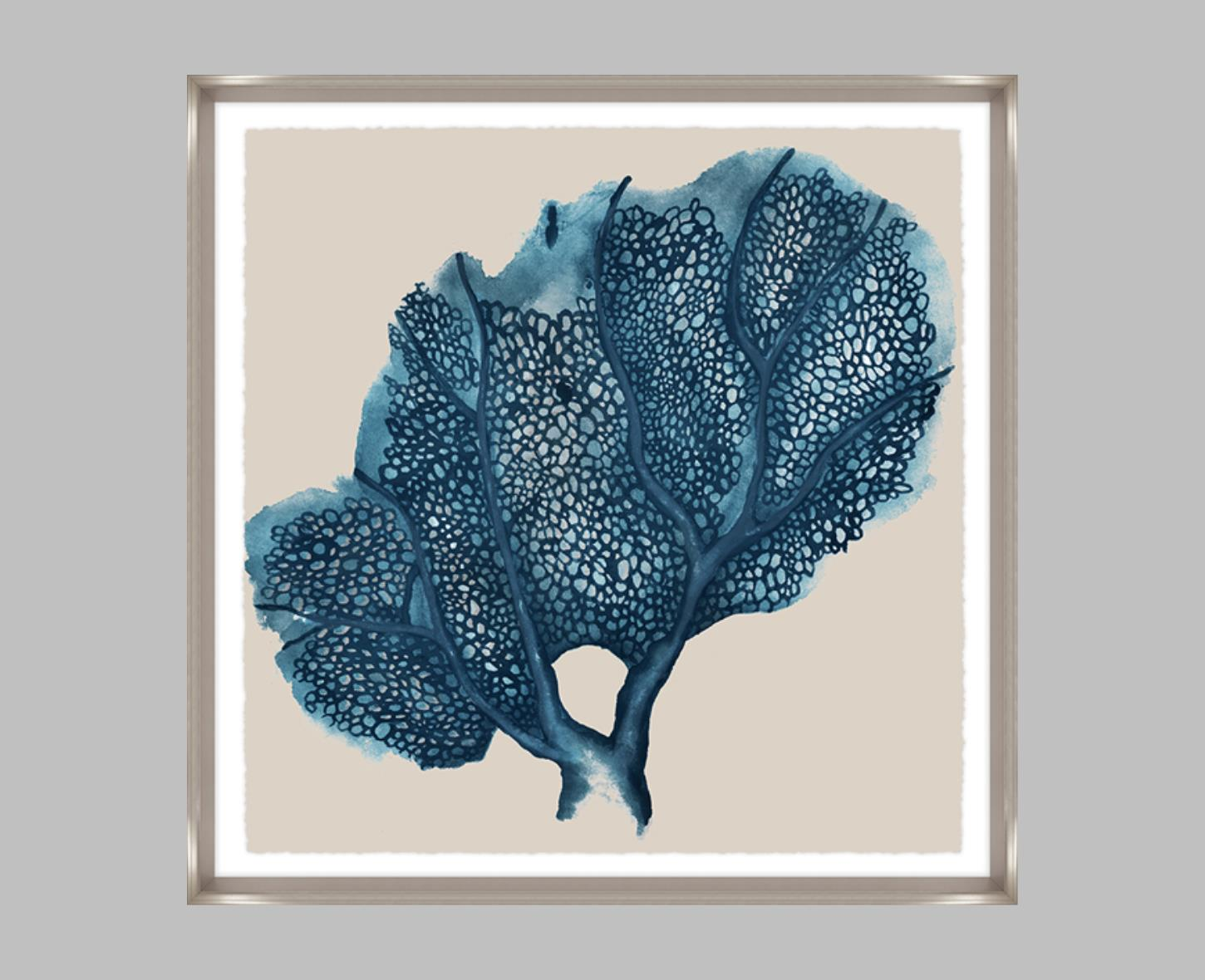 """Blue Coral III"""