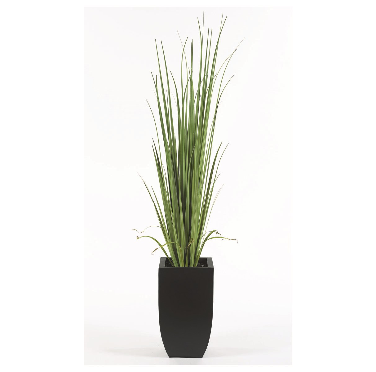 6′ Tall Contemporary Grass Floor Plant
