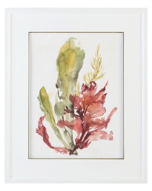 """""""Seaweed Garden I""""-$625.00"""