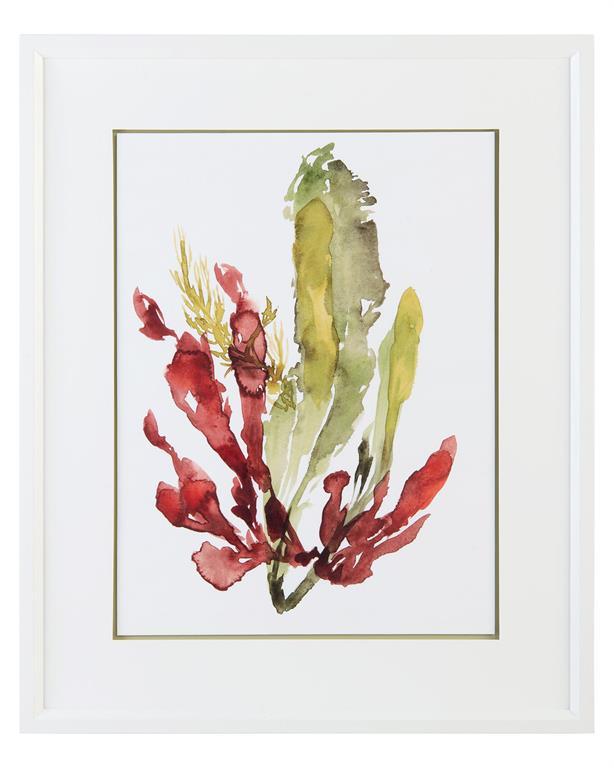 """""""Seaweed Garden II""""-$625.00"""