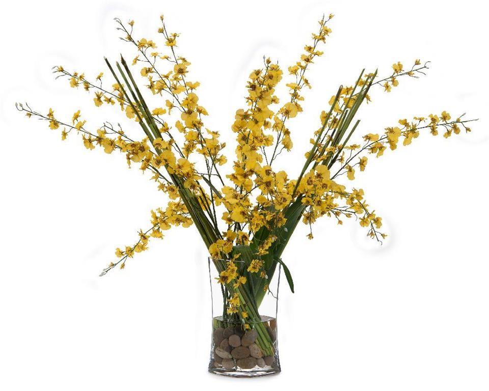 Golden Oncidiums
