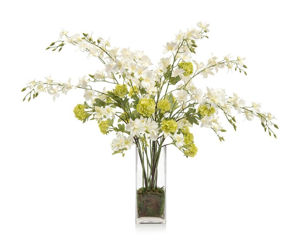 Organic Dendrobiums