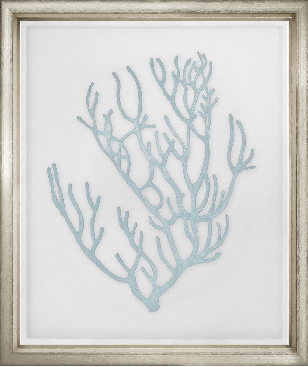 """Blue Velvet Corals 4""-$1,450.00"