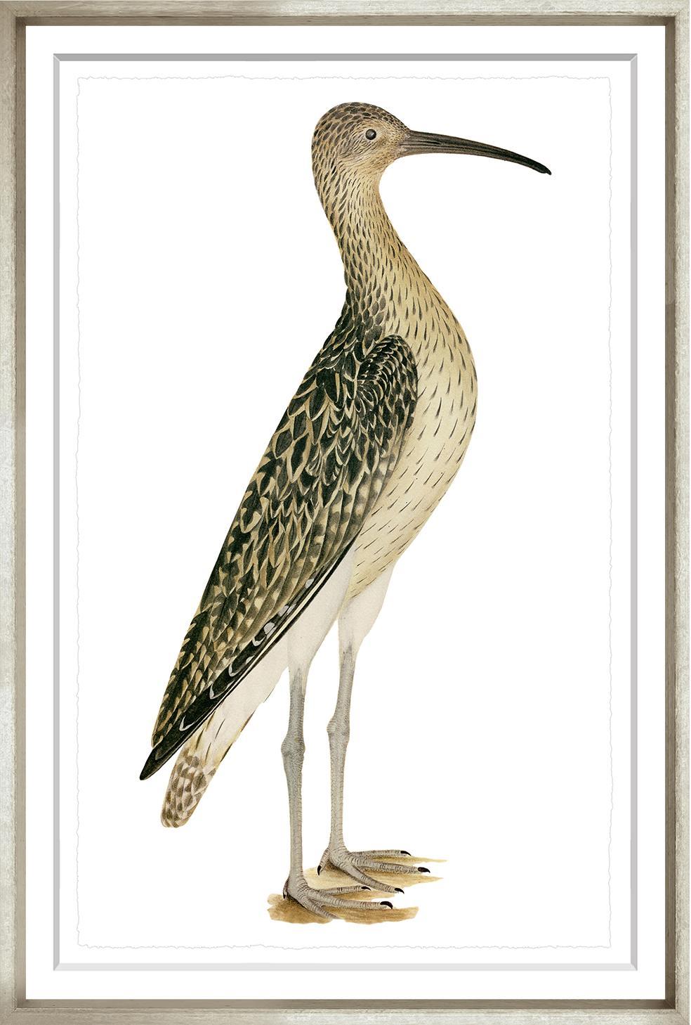 """Swedish Birds 4""-$345.00"