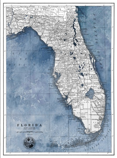 """New Florida Map"""