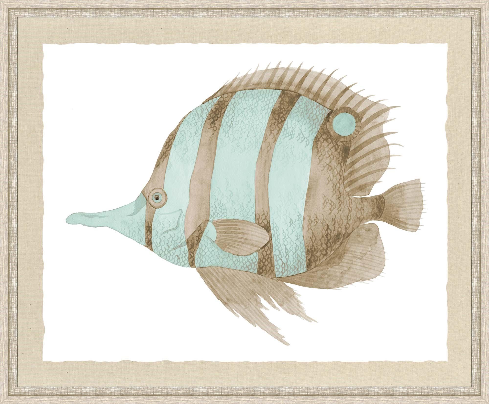 """Sealife"""