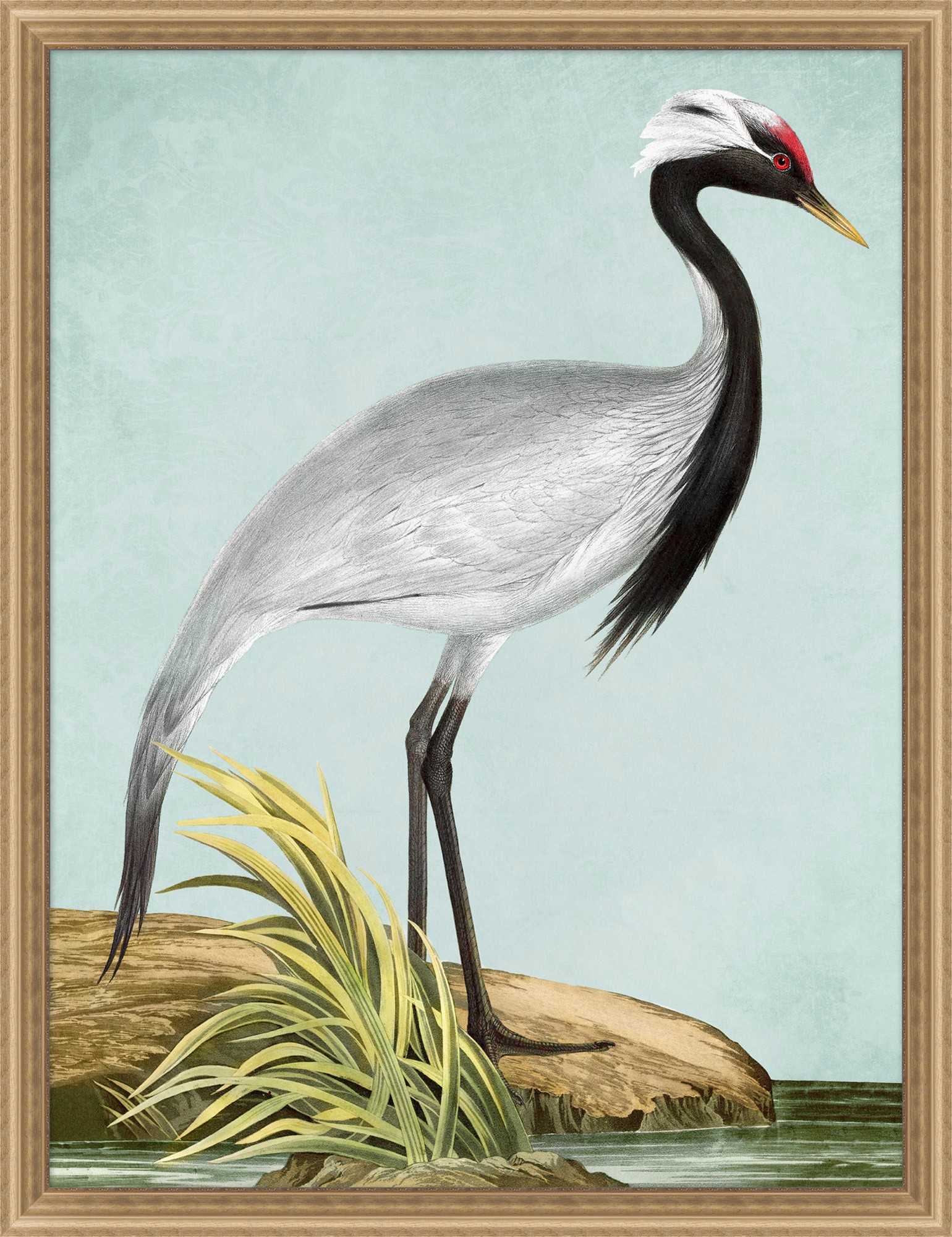 """Red Crowned Crane""-$670.00"