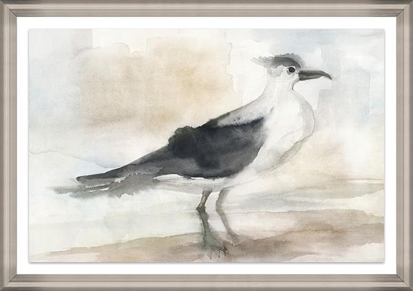 Seagull I-$498.00