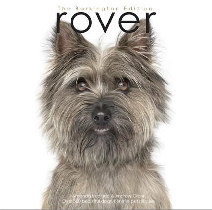 """""""Rover""""-$125.00"""