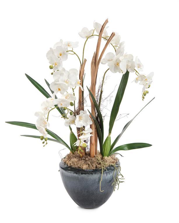 Wild Orchid Pot-$989.00